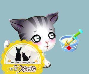 猫传染性腹膜炎治疗预防方法